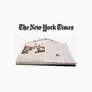 New York Times — Lisa Lipkin